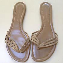 Sigerson Morrison Flat Flip Flop Ladies Leather Sandals -Size 9 1/2 Photo