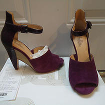 Sigerson Morrison Sandal   Size 7 New in Box  Photo