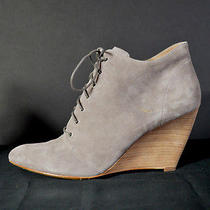 Sigerson Morrison Taupe Suede Lace Up Wedge Ankle Boots Sz 9.5 Photo