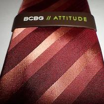 Silk Necktie Bcbg Max Azria Stripes  New With Tags  Macy's 49.50 Photo