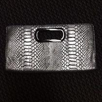 Silver Express Clutch Photo