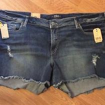 Silver Jeans Co. Womens Aiko Mid Rise Fringe Distressed Shorts Plus Size 24 L4 Photo