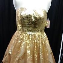 Size 10 Blush Prom by Alexia Gold Formal Dress Nwt  Strapless Unique Short Photo