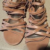 Size 10 Sandals. Brand New Photo