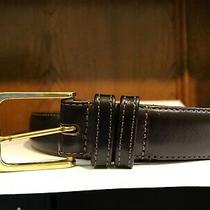 Size 38 Mocha Leather Belt by Coach Photo