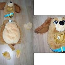 Size 6-12 Months Disney Store Lady & the Tramp Lady Puppy Dog Halloween Costume Photo