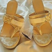 Size 6.5 Coach Wedge Sandals Photo