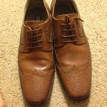 Size 8.5 Stacy Adams Wing Tips  Photo
