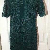 Size 8 Express Dress Solid Green Lace Short/sl Lined Waisted Sheath Below Knee Photo