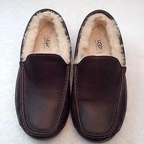 Size 8 M Australia Ugg Ascot Brown Leather Loafer Moccasin Fur Insulated Shoes Photo