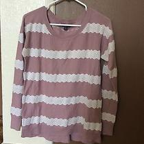 Size Medium M Blush Lace Sweater American Eagle Outfitters Juniors Photo
