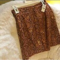 Size Small Express Midi Skirt Size 4 Snakeskin With Side Zipper Photo