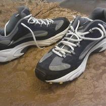 Skechers Sport Shoes  Photo