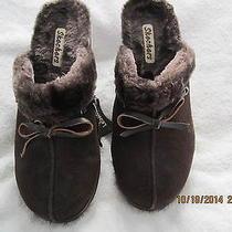 Sketchers Shoes Size 8 Photo