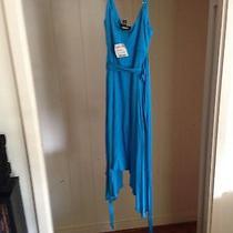 Sleek Blue Bebe Dress Photo