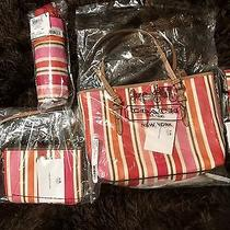 Slightly Used Stripe 4 Pc Set With Original Tags and Bags. Photo