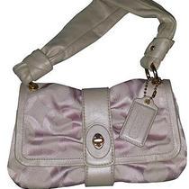 Small Pink Coach Handbag Parker Op Art  Photo
