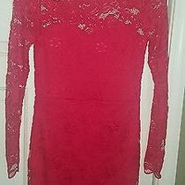 Small Red Lace h&m Dress Photo