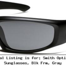 Smith Optics Hudson Tactical Sunglasses Blk Frm Gray Hutpcgy22bk Photo