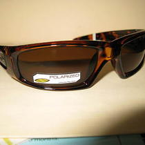 Smith Optics Hudson Tortoise Polarized Brown Tactical Sunglasses Nwot 125 Photo