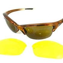 Smith Optics Sunglasses  Brown & Silver  Extra Lens 001 Theory 1eb A7 New 2 Photo
