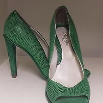 Snake Skin Green Pumps Photo