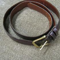 Soft Coach Mans Belt Brown Leather Sz 38 Dark Brown Photo
