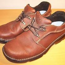 Sorel Men's Brown Leather Oxford Shoes Fire River Low  Nm2070 Sz 11     Euc  Photo