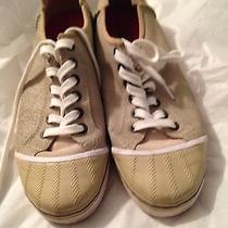Sorel Sneakers Photo