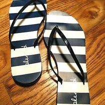 Splendid Flip Flops Sandals Size 9 Blue and White Striped Mint Condition Pre-Own Photo
