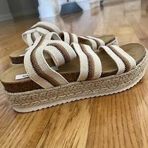 Steve Madden Bandi Platform Wedge Strappy Cork Sandal Size 8. Photo