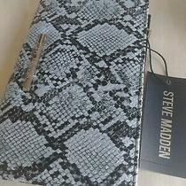 Steve Madden Bifold Wallet. Snake Blue/multi. Silver Hardware New Photo