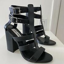 Steve Madden Black Leather Francine Sandal Heel 6 New 130 Photo