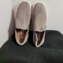 Steve Madden Boat Shoes Gray Size 8 Sb12 S Drrt Photo