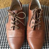 Steve Madden Brian Tan Loafers Photo