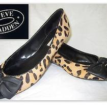 Steve Madden 'Brinkk' Leopard Wedge- Worn 2hrs. See Details- sz.9- Msrp 89.95-  Photo