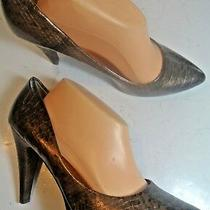Steve Madden Brown Snake Print Style Pumps Platform Heels Shoes Size 11  Closet Photo