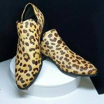 Steve Madden Chauncey Womens Ankle Boot Leopard Calf Hair Size 8 New Photo