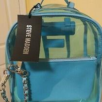 Steve Madden Clear Backpack Baby Blue New With Tag Photo