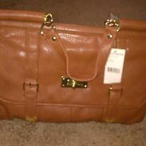 Steve Madden Cognac Handbag Photo