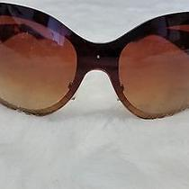Steve Madden Designer Sunglasses  Photo