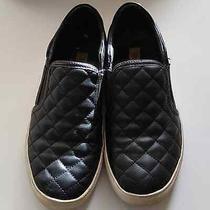 Steve Madden Ecentrcq Slip-on Sneakers Size 8 Photo
