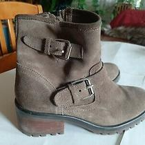 Steve Madden Gain Moto Ankle Boots 10 Tan Suede Photo