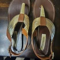 Steve Madden Gold Detail Thong Sandals Photo