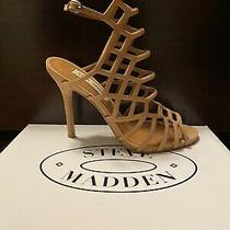 Steve Madden Heels 6.5 Photo