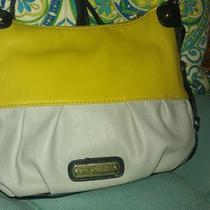 Steve Madden Hobo Bag Photo