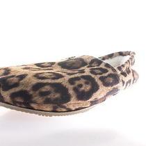 Steve Madden Leo Womens Slippers Cheetah Size 7 M Photo