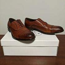 Steve Madden Morton Textured Leather Oxford Size 11 Photo
