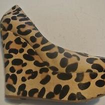 Steve Madden Pammy Calf Hair Leopard Print Platform Pumps Shoes Size 7.5 Closet Photo