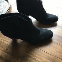 Steve Madden Pembrook Booties Size 10 Black Suede Photo